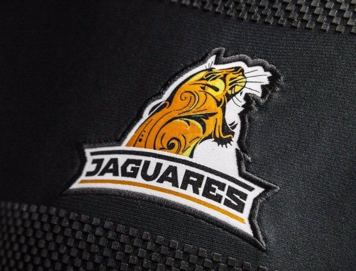 Jaguares16HomeDet