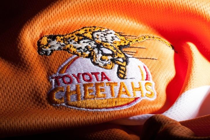 Cheetahs17HomeDet2